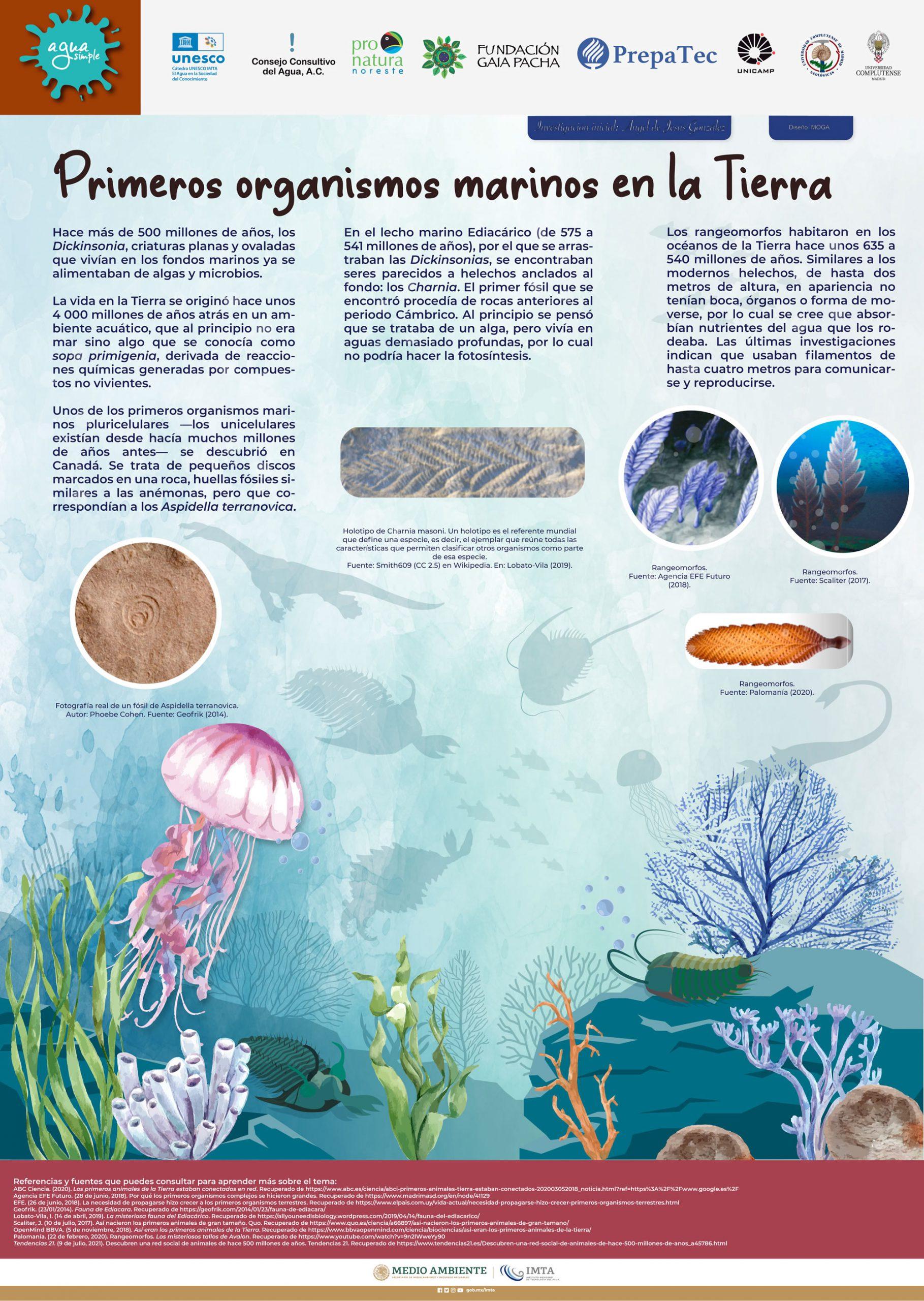 Primeros organismos marinos en la Tierra