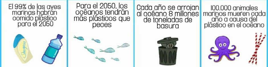 El 99 % de las aves marinas habrá comido plástico para 2050