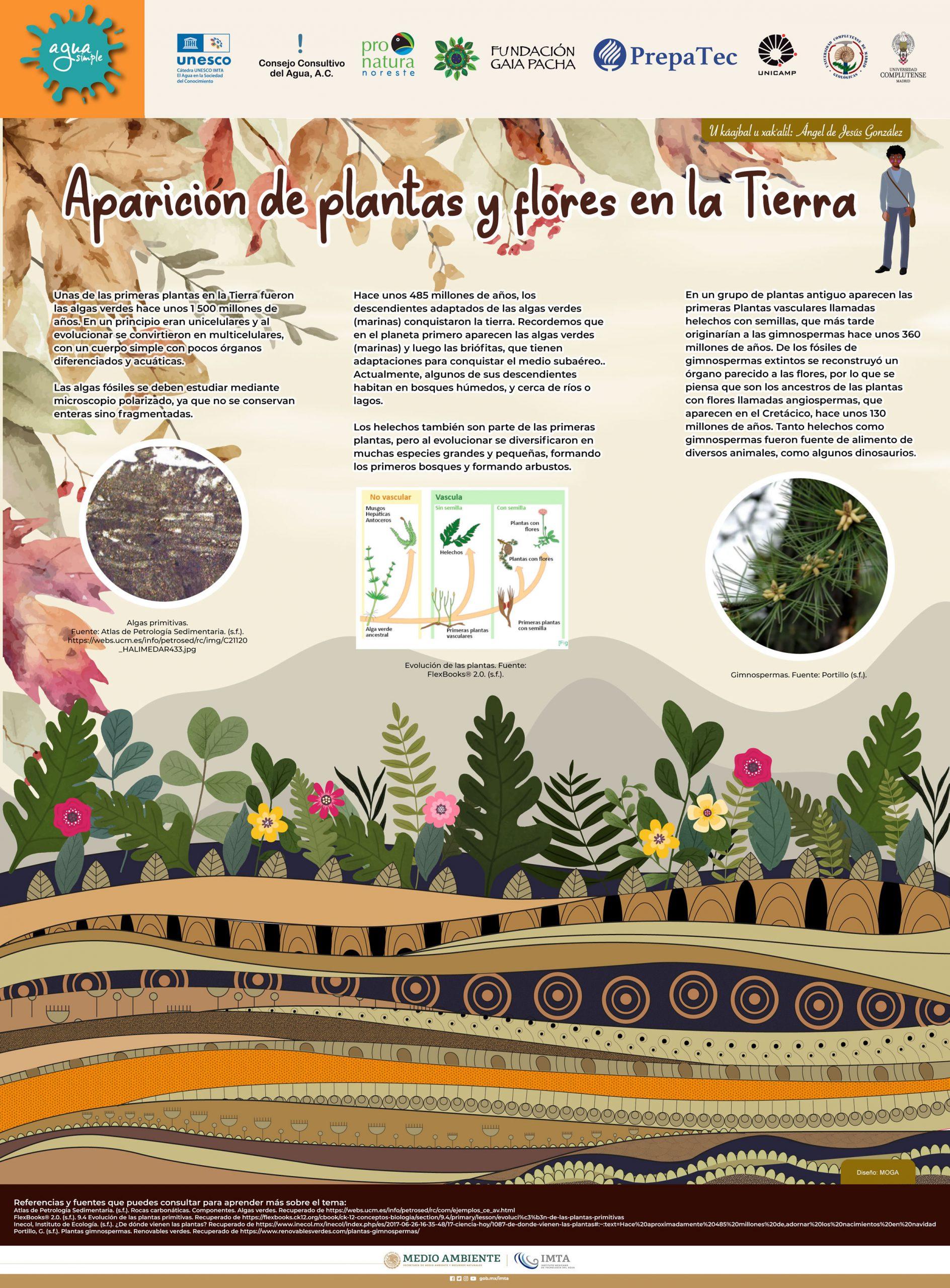 Aparición de plantas y flores en la Tierra